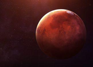 Mars Brain Damage Study
