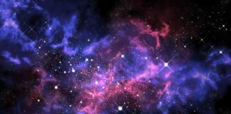 neutron-stars-endoplasmic-reticulum