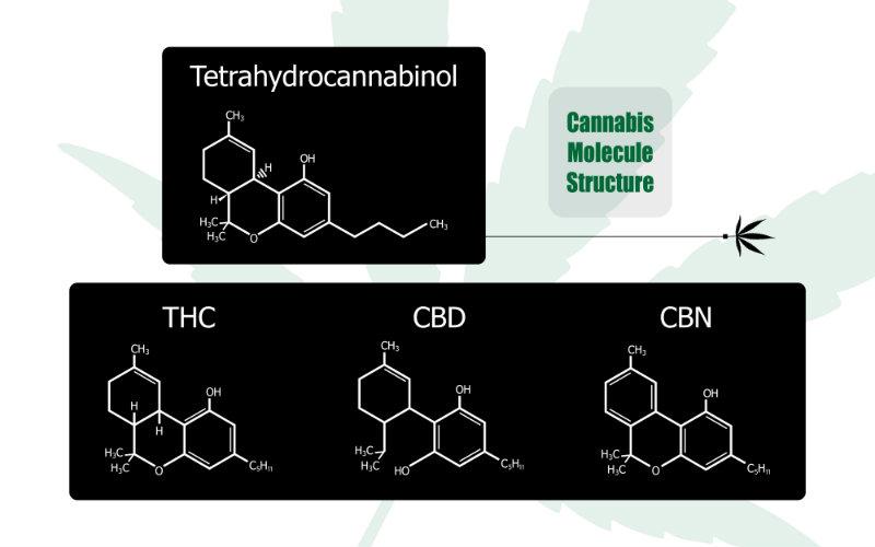 THC - Synthetic Marijuana