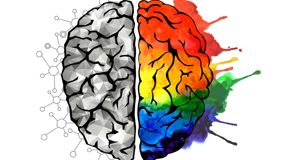 Image result for colourful brain