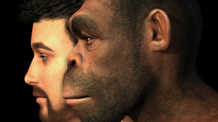 First Humans Came from Europe and Not Africa, Study Finds
