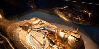 Mummy DNA